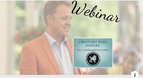Webinar - I huvudet på domaren med Mikael Nilsson