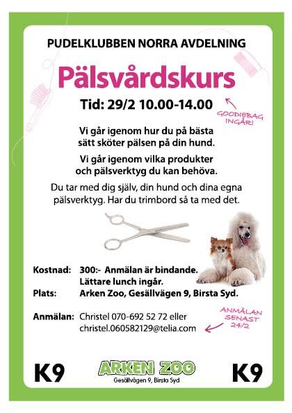 Pälsvårdkurs i Sundsvall