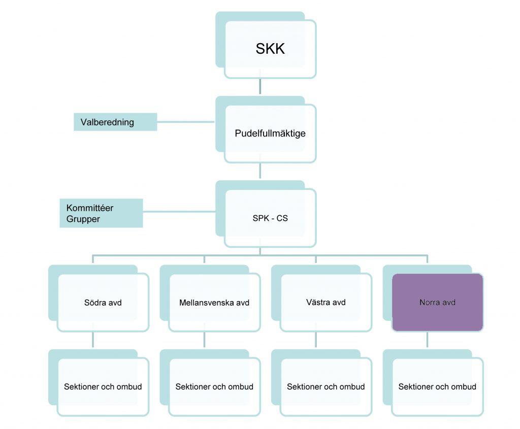 OrganisationsschemaNorra