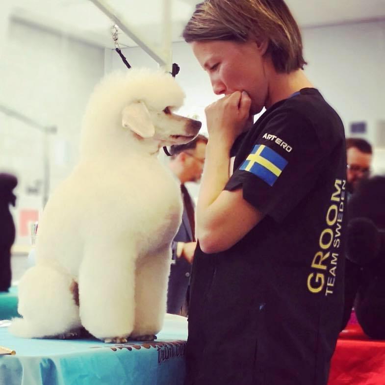 Jennie i svenska landslaget för hundfrisering