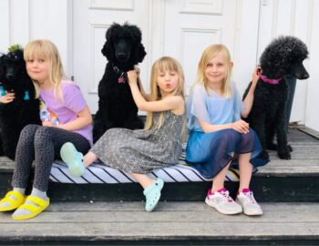 Freja, Maja och Vilja med familjens pudlar
