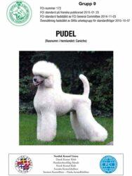 Pudel (alla storlekar) Usprungsland: Frankrike Tillhör grupp: 9 (sällskapshundar) (klicka på bilden så öppnas rasstandarden)