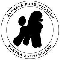 SPKV200x200
